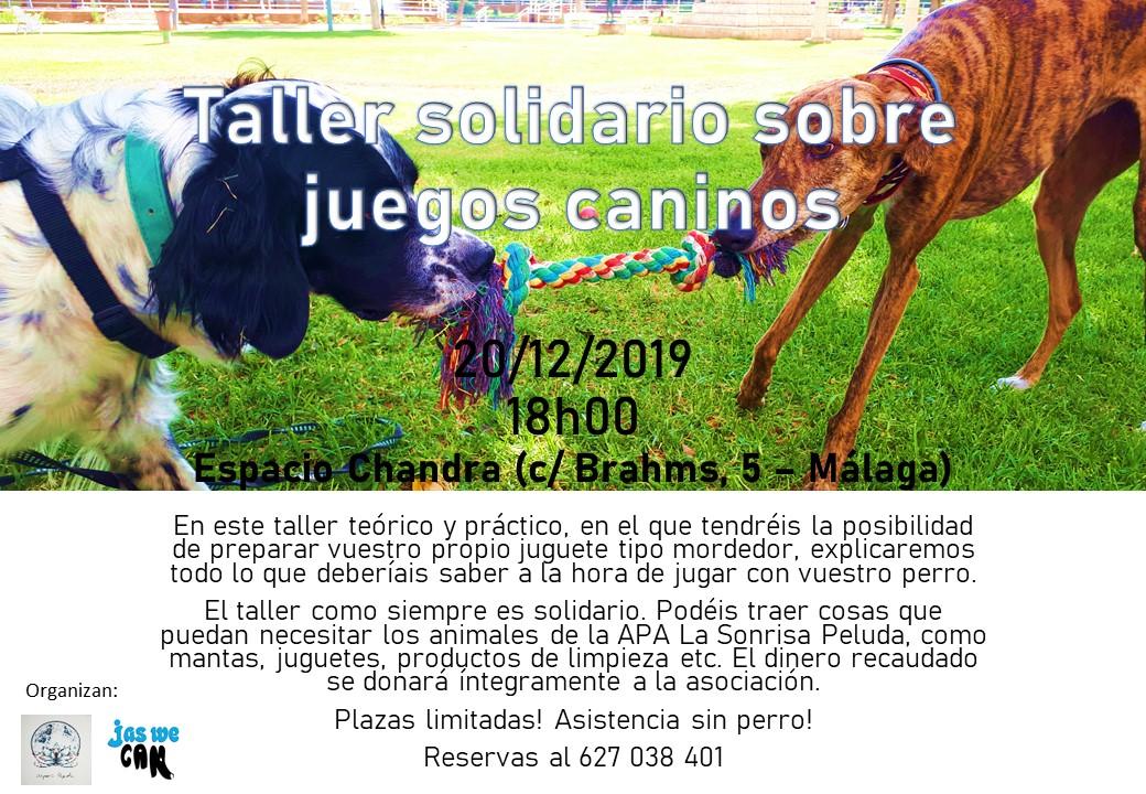 Taller solidario sobre juegos caninos - Jas We Can